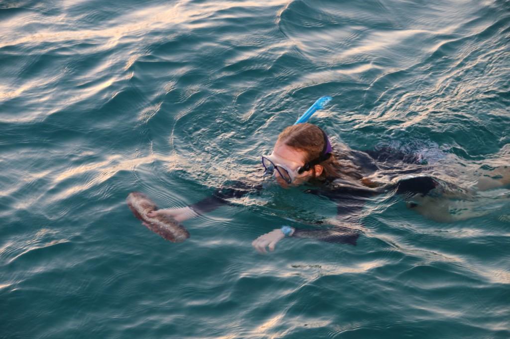 Haily taucht die Seegurke hoch. Schon recht eklig!