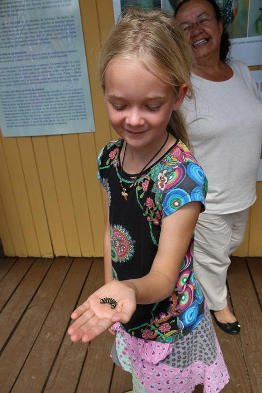 Mina hält die nächste Generation der Monarch-Falter in den Händen
