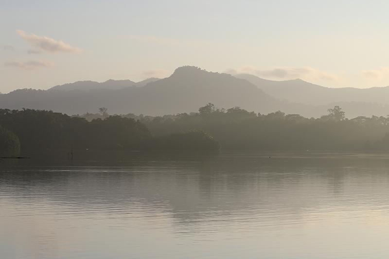Nebel zieht morgens idyllisch über die Flusslandschaft