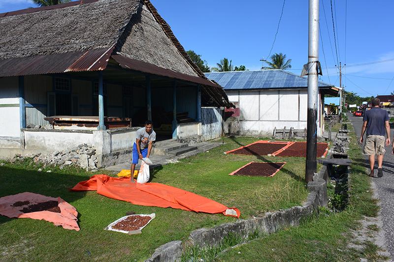 Es riecht großartig: Nelkenernte östlich von Ambon.