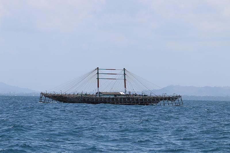 Unzählige Squid-Fischerboote liegen in der Bucht von Jayapura