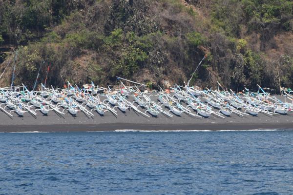 Spider-Boats am Strand in Nordbali. Von Hier segeln die Fischer in die strömungsreichen Gewässer zwischen Lombok und Bali
