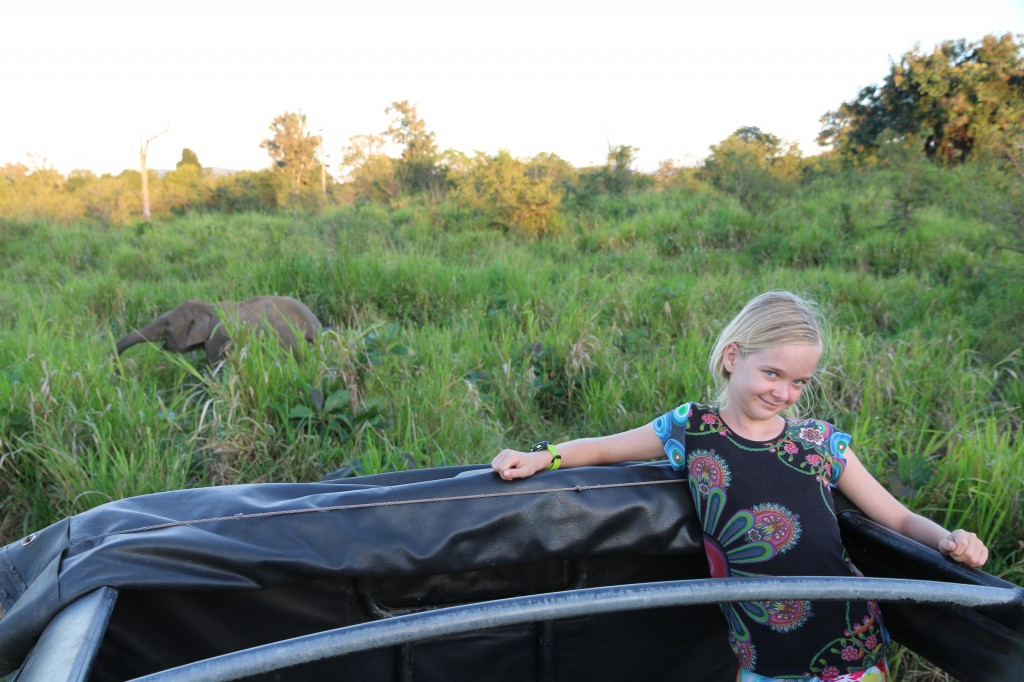 Auf Elefantensafari in Sri Lanka