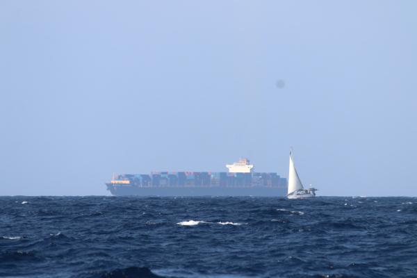 Kwispel kuschelt mit einem Containerfrachter