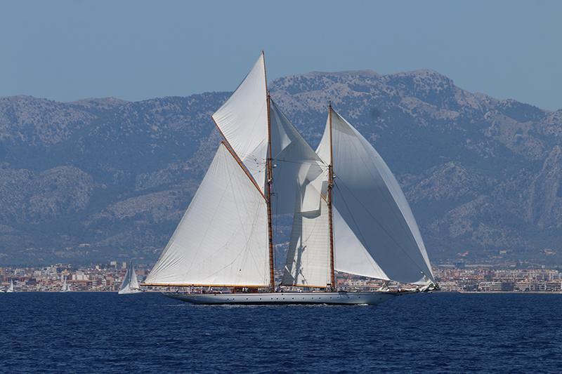 Begrüßung auf Mallorca: Die Bucht von Palma ist voller klassischer und moderner Superyachten.